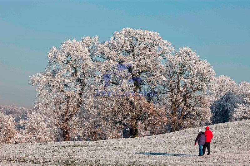 Hoarfrost - Warwickshire - England