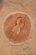 Fossil Ray - Cyclobatis minor - Cretaceous - Lebanon