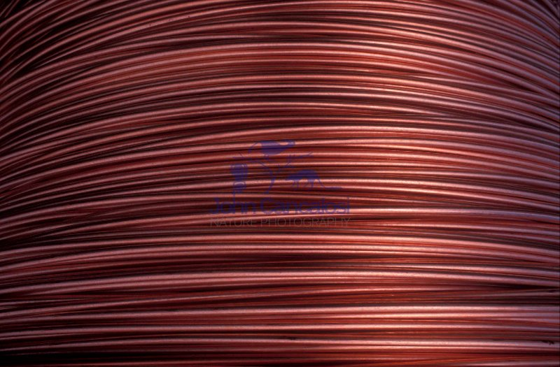 Coil of Copper Wire Rod - Arizona - USA