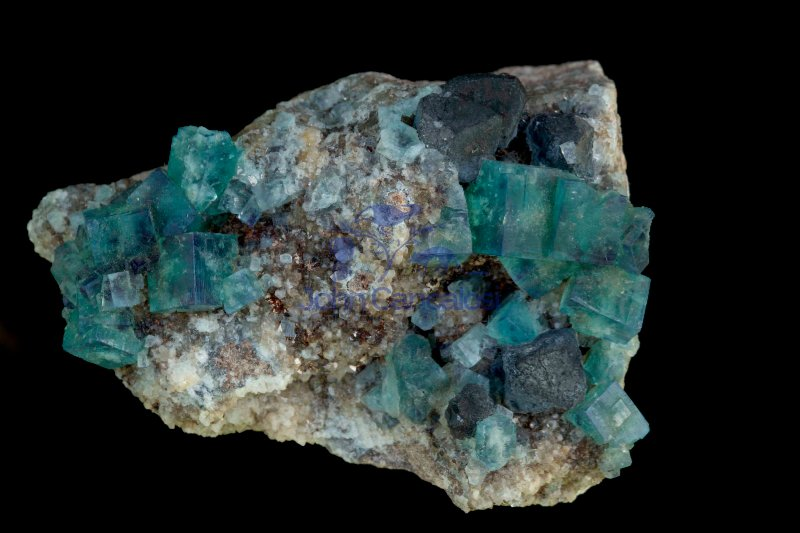 Fluorite and Galena - Rogerley Mine - County Durham - England -