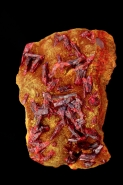Realgar  AsS - Arsenic sulfide(red) on orpiment As2S3 Arsenic tr