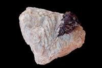 Columbite (Niobite) -Brazil