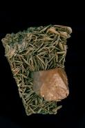 Scheelite Crystal (CaWO4) on Muscovite - China