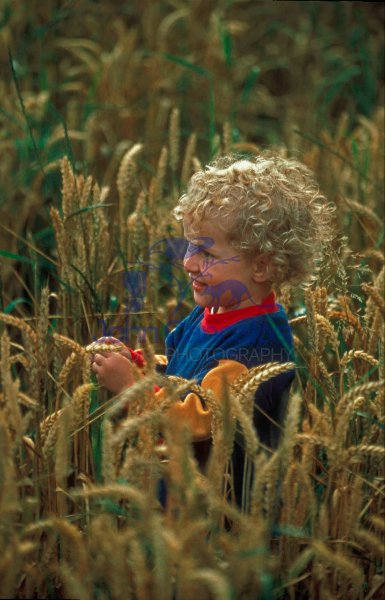 Boy - Age 2 - In field - UK