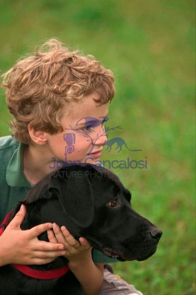 Boy with Labrador Retriever - Pennsylvannia - USA