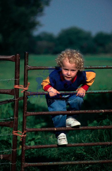 Small Boy Playing on Fence - UK
