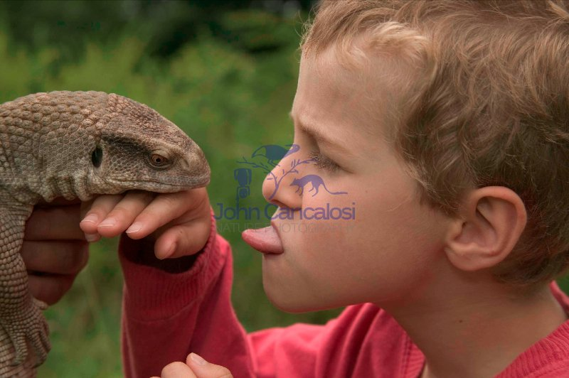 Boy with Savannah Monitor-model released