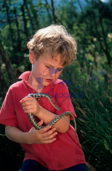 Boy Looking at Snake - Spain