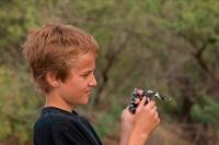 Boy holding Common Kingsnake (Lampropeltis getulus)-Arizona