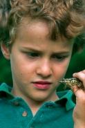 Boy with pickerel frog-Pennsylvania