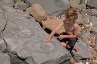 Child with fossil ammonites-Lyme Regis-England