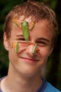 Boy with Gliding leaf frog- Agalychnis spurrelli  - Costa Rica