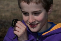 Boy Observing Spotted Salamander - New York USA