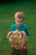Child with Tortoise-model released