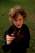 Boy holding Louisiana Crayfish (Procambarus clarkii) - Louisiana
