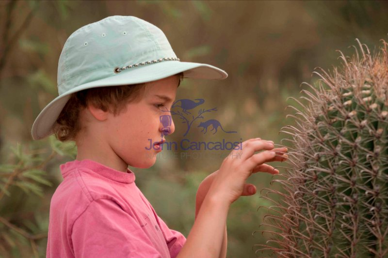 Boy with Saguaro Cactus - Sonoran Desert - Arizona - USA