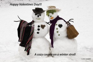 Snow couple, Washington DC area, after winter storm